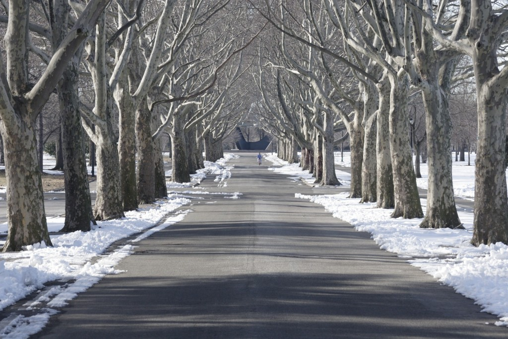 The snow-covered Flushing Meadows Park is a quiet place in the dead of winter, but transforms into a lively neighborhood hangout during the warm summer months.